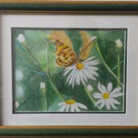 Le Papillon - Aquarelle sur papier - (23 x 17 cm)