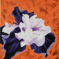 L'Iris - Acrylique sur toile - ( 40 x 40cm)