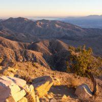 Joshua Tree National Park (États Unis)